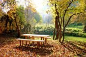 stock-photo-autumn-picnic-in-the-nature-in